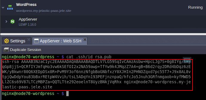 4362-1-migrate-wordpress-website-web-ssh-output-public-key